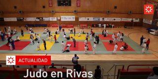 Judo en Rivas. Jornada familiar de los juegos escolares