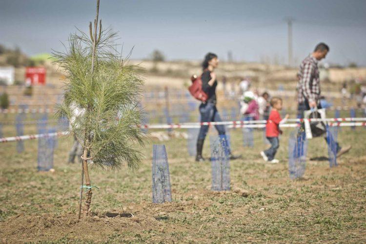 Scania plantará 2.000 árboles en Rivas