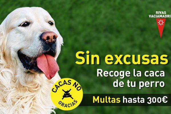 En Rivas no valen excusas: cacas de perro, no