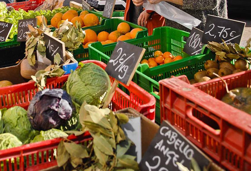 El mercado agroecológico se traslada al Central