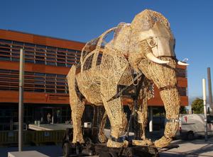 'El viaje del elefante': Saramago en Rivas
