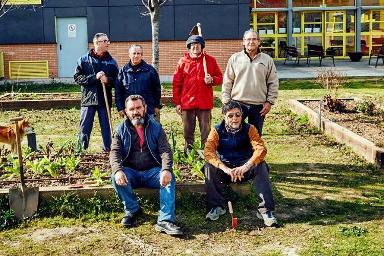 Huertos urbanos:el espacio para compartir vida saludable