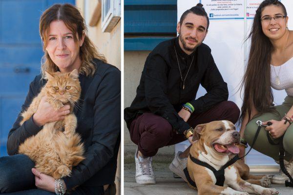 Perros y gatos ripenses buscan hogar