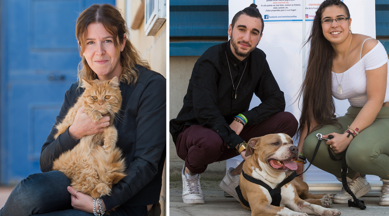 Adopta animales