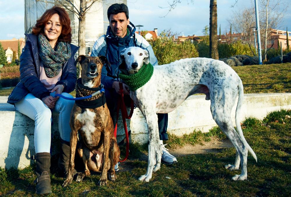 En Rivas nos gustan los animales, ¿por qué?