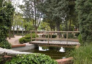 Rivas, una ciudad con 55.000 árboles urbanos