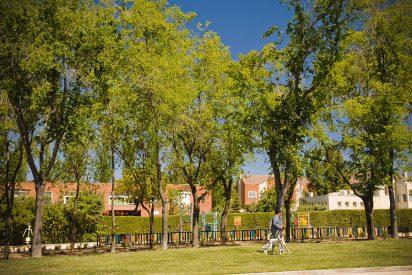 Rivas inicia 2019 con 5 millones en inversiones