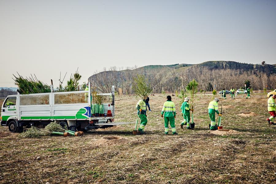 4.800 nuevos árboles para reforestar Rivas