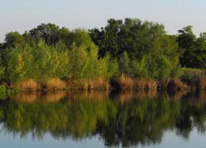 El ocio ecológico de octubre: programa