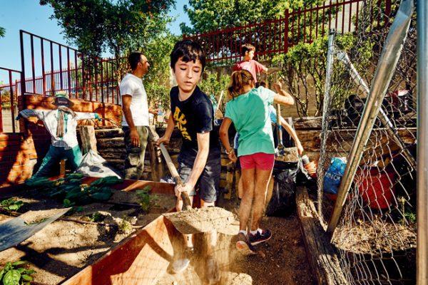 Huertos escolares: aprender al aire libre