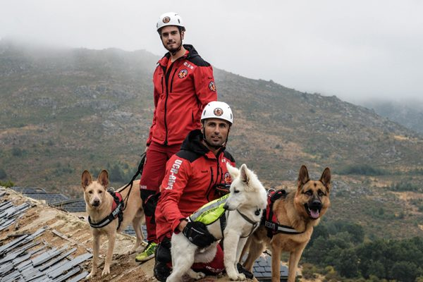 Perros de rescate: ladridos que salvan vidas