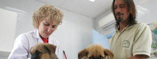 Campaña de vacunación e identificación animal