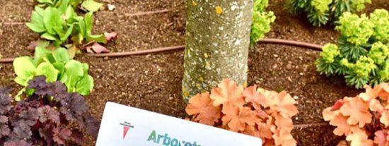 Arboretum: reabre el jardín botánico de Rivas