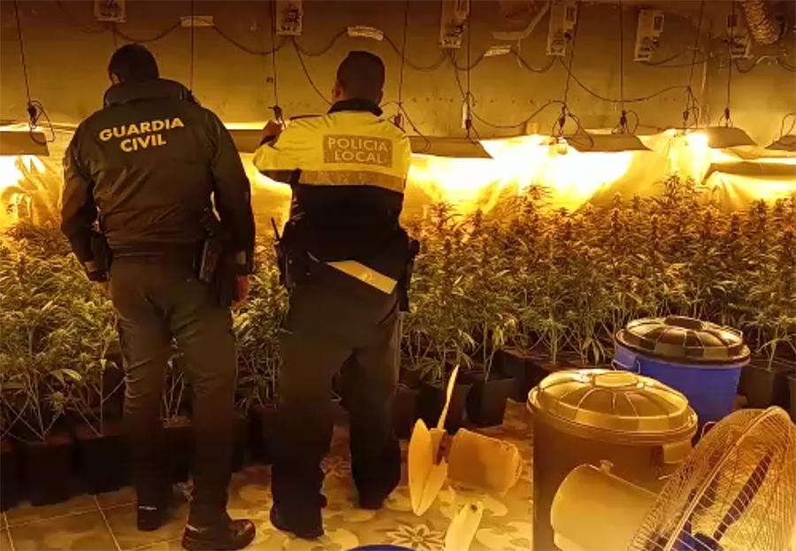 Desmantelados dos locales de cultivo de marihuana