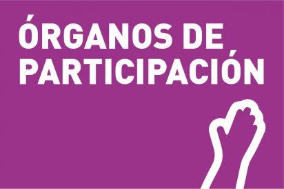 Organos de Participación