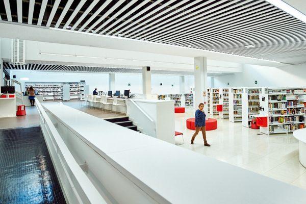 Bibliotecas de Rivas: lecturas online para todo el mundo