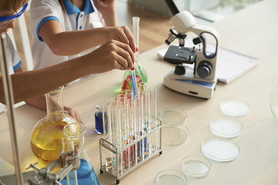 En familia: taller sensorial, ciencia o biodanza