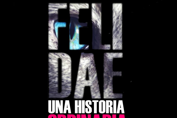 'La catarsis de Felidae', monólogo de Miguel H. Death