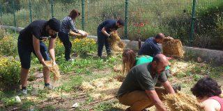 Huerto ecológico comunitario: los sábados