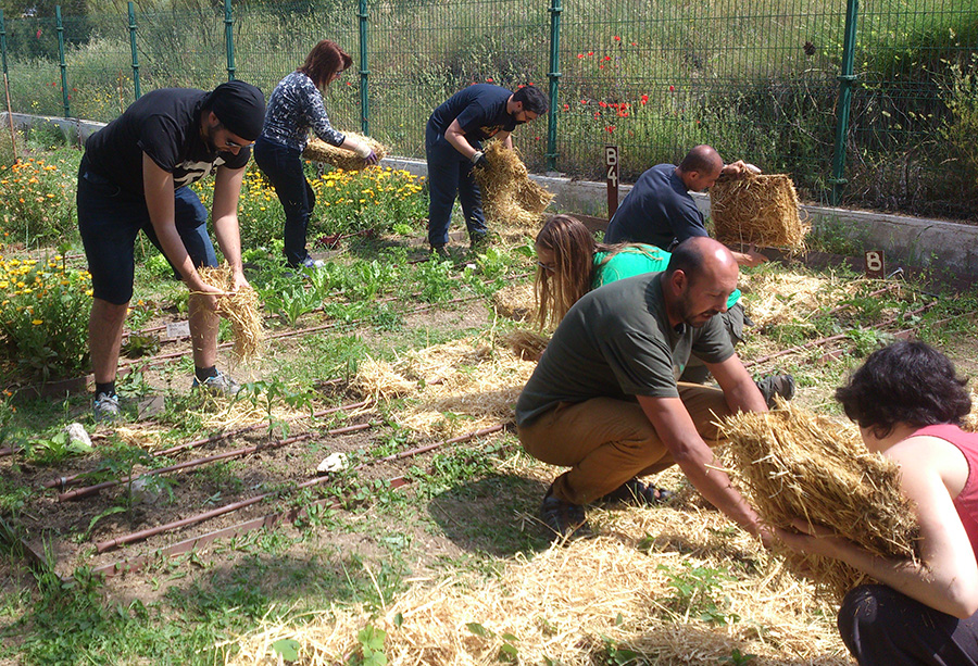 Formación huerto ecológico: el compostaje