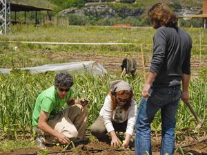 Parque Agroecológico con empleos 'verdes'
