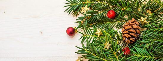 Nueva oportunidad para los árboles de Navidad