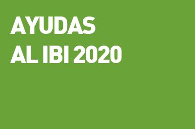 Ayudas al IBI 2020