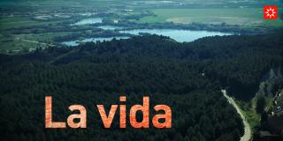 La vida en Rivas sale del confinamiento