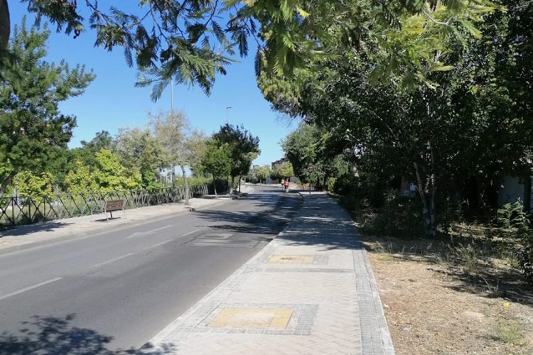 500.000 euros más para el plan de arbolado urbano