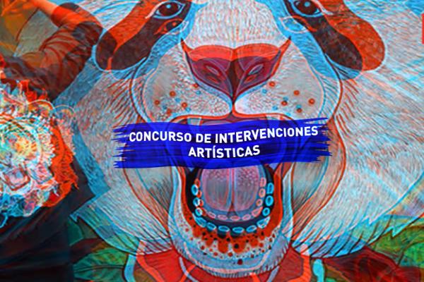 Concurso de Intervenciones Artísticas en la calle