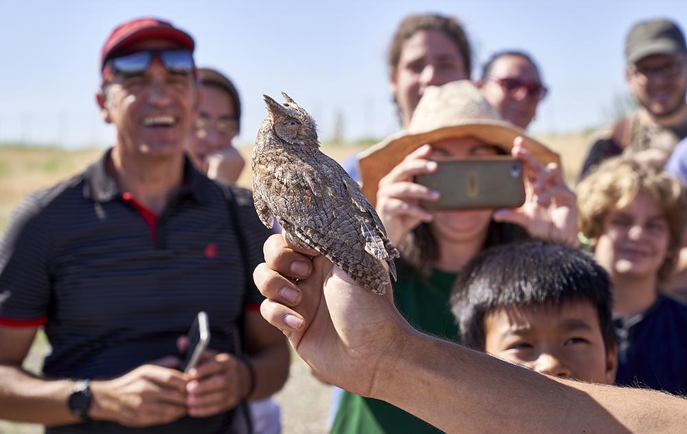 Animales, yacimiento, huerto y yincana: ocio en el Chico Mendes