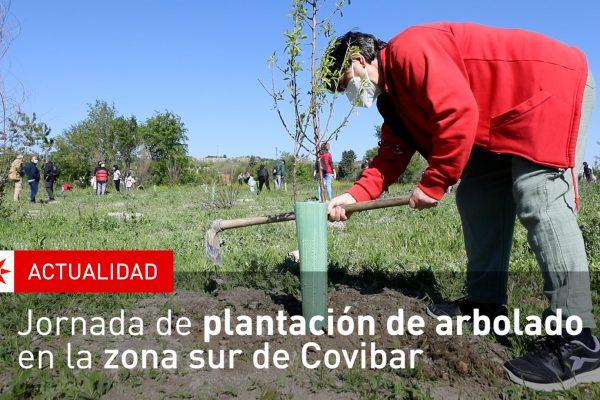 Jornada de plantación de arbolado en la zona sur de Covibar