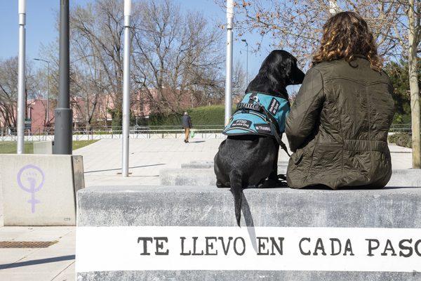 Asistencia canina por la integración