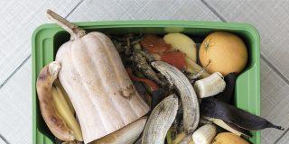 Restos de comida o césped, al quinto contenedor