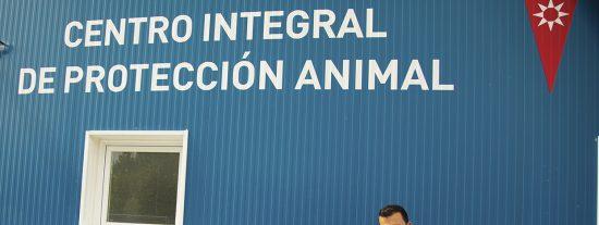 Rivas cuida de sus animales: perros y gatos estrenan casa