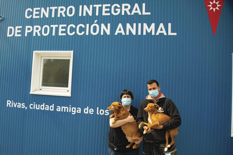Rivanimal retoma sus jornadas mensuales de adopción canina