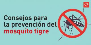 Consejos para la prevención del mosquito tigre